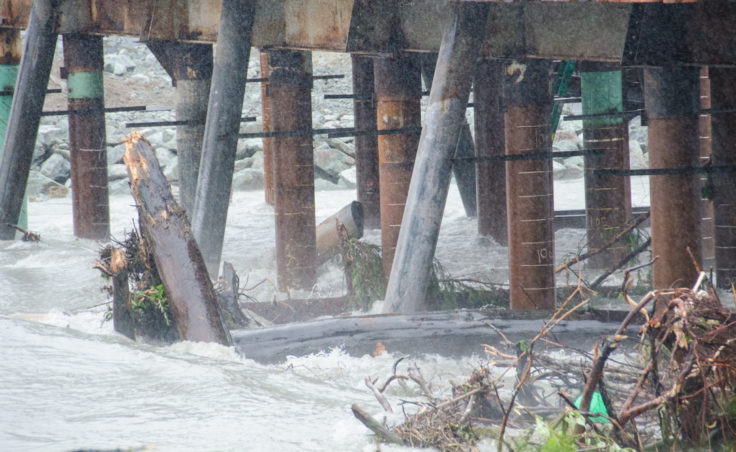 Trees and stumps are caught up under the Brotherhood Bridge construction. (Photo by Heather Bryant/KTOO)