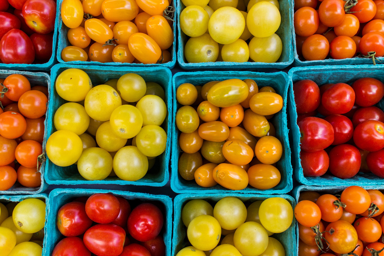 South Madison Farmers Market Has New >> Tomatoes At Union South Farmers Market In Madison Wisconsin Ktoo