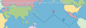 The Whale mApp is a new technology to aid citizen scientists in reporting sightings of marine mammals. Screenshot from whalemapp.org.