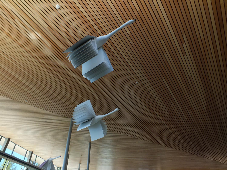 Ktoo Juneau Conference Room