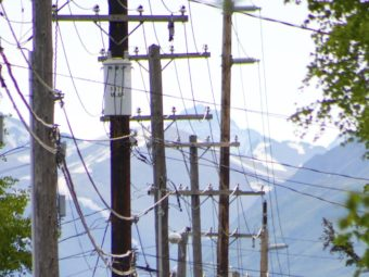 Power poles in Anchorage in June 2010.
