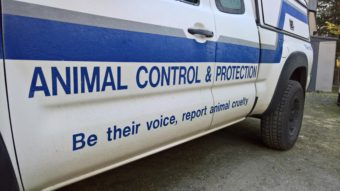 An animal control vehicle outside Gastineau Humane Society in Juneau on Nov. 19, 2016. The city contracts the humane society for animal control services. (Photo by Jeremy Hsieh/KTOO)