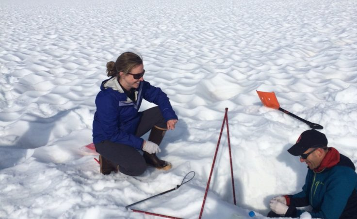 Researchers dug snow pits to sample black carbon that had accumulated with rain and snowfall on the Juneau Icefield over the previous few months.
