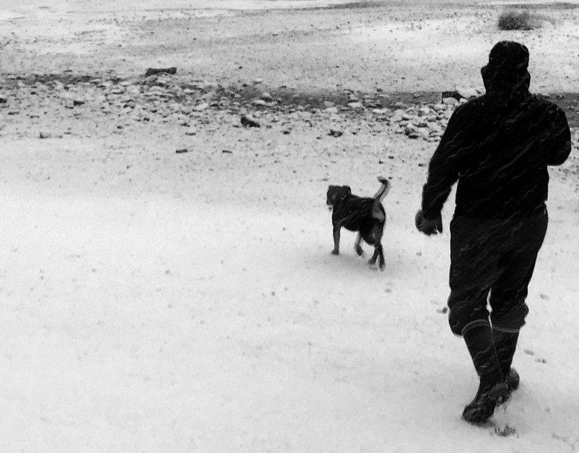 James Brooks walks his dog Cookie along Mendenhall Lake on Dec. 3, 2016, in Juneau.