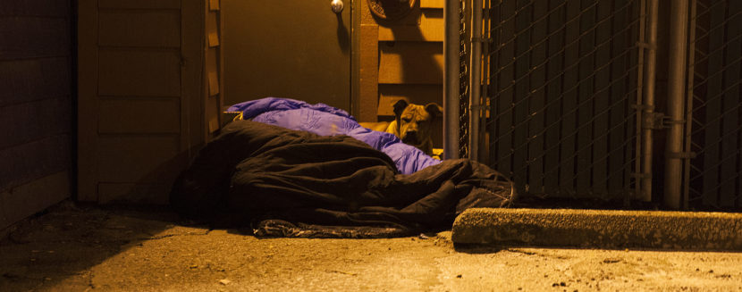 Two people and a dog curl up near a boiler room on Shattuck Way on Jan. 20, 2017, in downtown Juneau, Alaska. (Photo by Rashah McChesney/Alaska's Energy Desk)