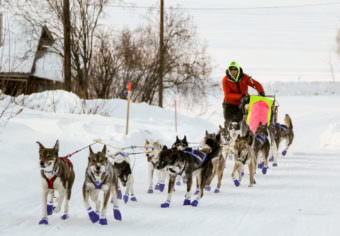 Wade Marrs was the first musher to reach the Ruby checkpoint of the Iditarod, coming off the Yukon River into town at sunset. (Photo by Zachariah Hughes/Alaska Public Media)