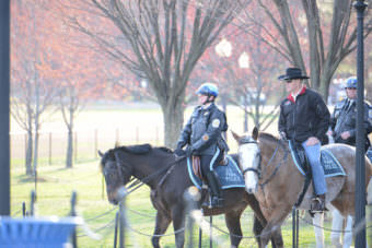 Interior Secretary Ryan Zinke rode a National Park Service horse named Tonto about a mile, posing along the National Mall for photos. The Park Service, the Mall and the horse are within Interior's domain. (Interior Department photo)