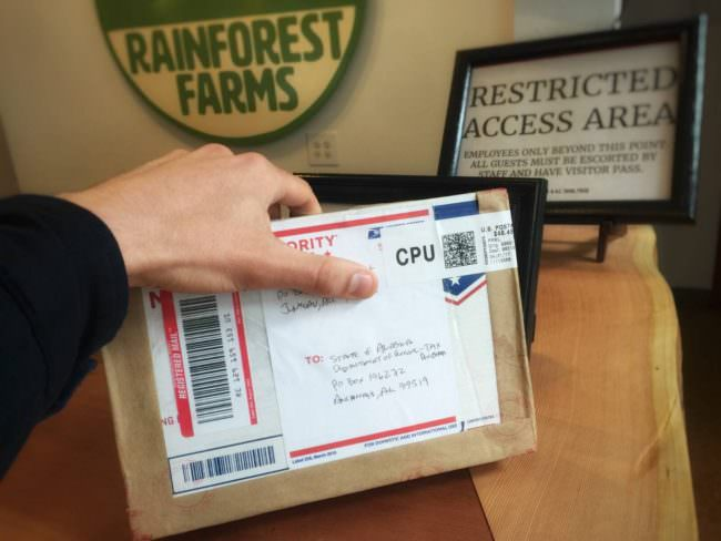 Return to sender: Juneau pot business blocked from mailing