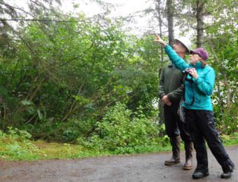 Forest Service Plant Pathologist Robin Mulvey points out infected spruce branches at Juneau's Shrine of St. Therese to shrine volunteer Brian Flory on July 11, 2017. (Photo by Ed Schoenfeld/ CoastAlaska News).