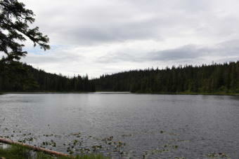 Auk'Tah Lake became Angoon's water source in the early 90s. Before that, the village relied on a muskeg for its public water. (Photo by Elizabeth Jenkins/Alaska's Energy Desk)