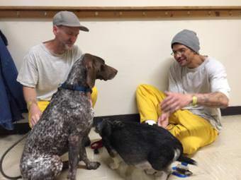 Alan Newby, left, and Jonathan Norton play with their new dogs at Wildwood Correctional Center, Kenai. (Anne Hillman/Alaska Public Media)