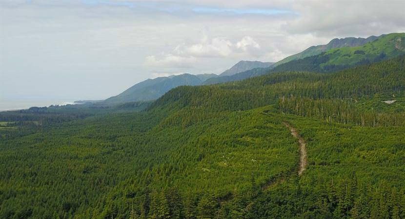 Alaska Mental Health Trust Authority | KCAW