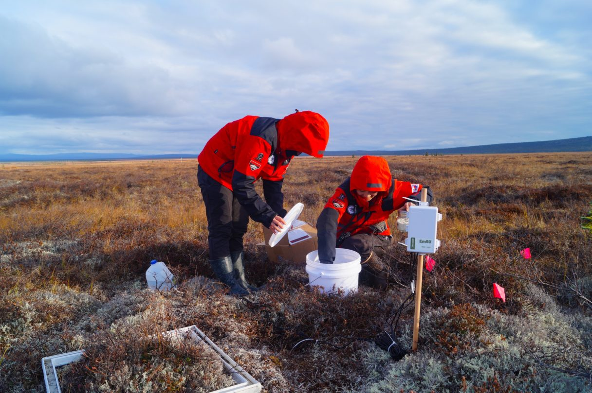 Members of the Korean Polar Research Institute research team take samples at their site near Council, Alaska. (Photo courtesy Min Jung Kwon)