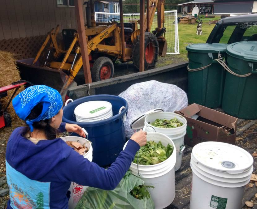 Lisa Daugherty, owner of Juneau Composts!, unloads residential food scraps on Aug. 25.