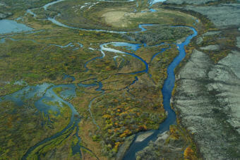 Aerial view of braided wetlands and tundra that is typical of the Bristol Bay watershed in Alaska. Upper Talarik Creek (shown here) flows into Lake Iliamna and then the Kvichak River before emptying into Bristol Bay.