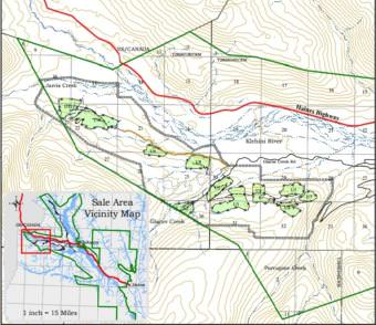 The Baby Brown sale area. (Map courtesy state of Alaska Division of Forestry Haines Office)