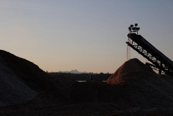 Wood chips at the Viking Lumber yard (Photo by Elizabeth Jenkins/Alaska's Energy Desk) 12/05/17