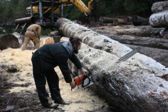 Brent Cole Jr. from Alaska Specialty Wood in Hollis (Photo by Elizabeth Jenkins) 12/06/17