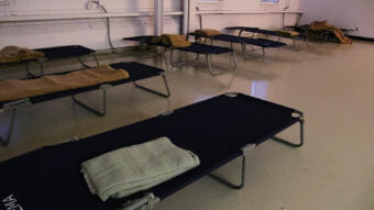 A row of dark colored cots along the walls of a room with a single blanket on top of each cot