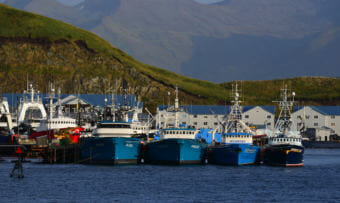 Fishing trawlers lined up in Dutch Harbor, on Sep. 24, 2013, in Unalaska, Alaska.(Photo courtesy/James Brooks)
