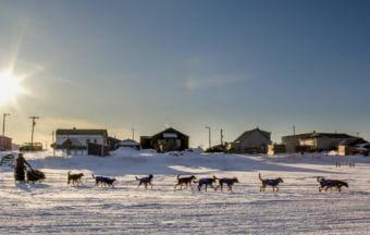 Nic Petit mushes out of Unalakleet on Sunday. (Photo by Zachariah Hughes/Alaska Public Media)