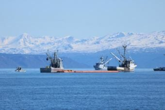 Several fishing vessels in Homer run through oil spill response drills put on by Alyeska Pipeline Service Company. (Photo by Aaron Bolton/KBBI)