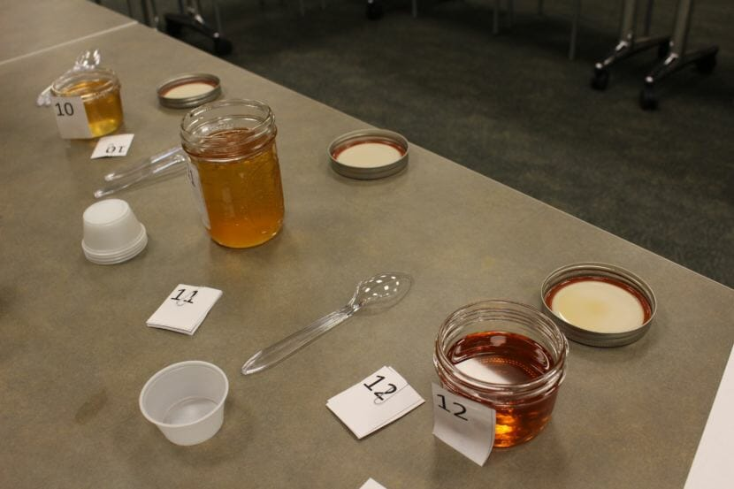 There were two categories for the seal oil: with and without crackling. (Photo by Elizabeth Jenkins/Alaska's Energy Desk)