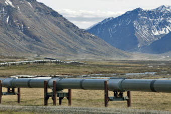 The Trans-Alaska Pipeline runs alongside the Dalton Highway near the Toolik Field Station on June 9, 2017, in the North Slope Borough. (Photo by Rashah McChesney/Alaska's Energy Desk)