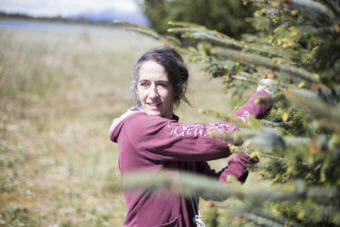 Molly Kelly and her family collect spruce tips every spring in Gustavus. The commercial harvest brings an economic boost to the town. (Photo by Annie Bartholomew/KTOO)