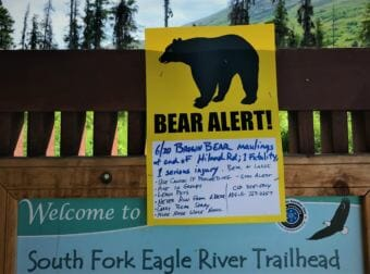 The Parks Department closed the South Fork Trail in Eagle River for a few weeks, but reopened it in late July. (Photo by Emily Russell/Alaska Public Media)