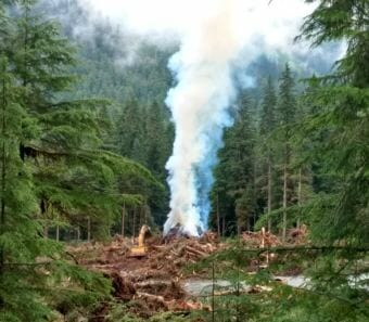Excavators load trees and brush into a burn pile on July 17, 2018, on about 20 acres of land being cleared by the Central Council of Tlingit and Haida Indian Tribes of Alaska.