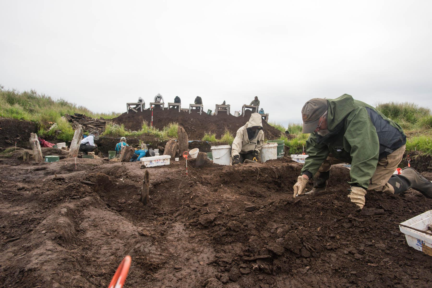 Dr. Rick Knecht digs July 24, 2018, at the Nunalleq site. (Photo by Katie Basile/KYUK)