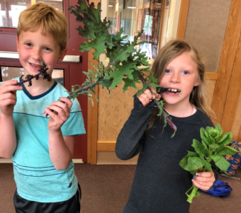 Nearly 200 elementary school students helped grow produce at Riverbend Elementary School in summer 2018. (Photo courtesy Karen Goodell)