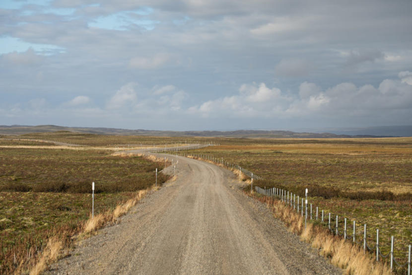 The existing 17-mile part of the road leading out of King Cove, Alaska, ends right at the refuge's wilderness boundary.