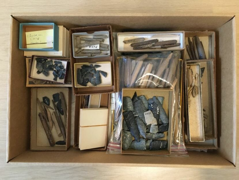 Artifacts from Helge Larsen's 1949-50 excavations housed at the Danish National Museum in Copenhagen. The human tooth, rediscovered by Jeff Rasic in 2016, hadn't ever been analyzed; it was lost to time, stored in a box like this one.