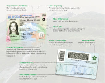 A diagram shows the features on Alaska's new REAL ID.