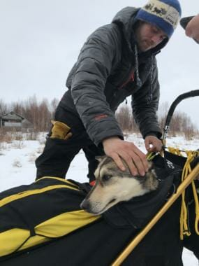 Joar Leifseth Ulsom carried one dog into the checkpoint of Iditarod on March 7, 2019.