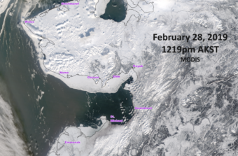 A satellite image taken of the Norton Sound region's sea ice extent on February 28, 2019. (Photo by Rick Thoman/ACCAP)
