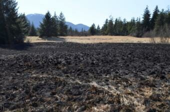 An area of grass approximately 400 feet by 400 feet caught fire Sunday afternoon near the corner of Sunset Street and Alaska Avenue in Lemon Creek. (Photo courtesy of Capital City Fire/Rescue)