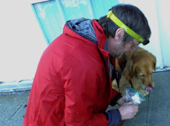 SEADOGS' Geoff Larson introduces a gauze bandage with a missing girl's scent to Tango, a 4-year-old Golden Retriever which is trained as a trailing or scent discerning dog. (Photo by Matt Miller/KTOO)