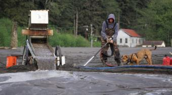 Nathan Brooks sprays seawater into the sand at the beach near Sheep Creek in Juneau on May 15, 2019, while his pitbull King watches. The slurry gets pumped to the top of his sluice box.