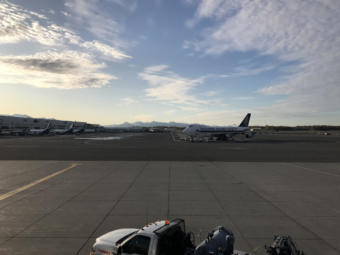A Singapore Airlines cargo plane sits outside the North Terminal at Ted Stevens Anchorage International Airport.