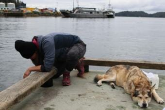 EnviroNaomi Bargmann conducts tests at the Starrigavan Dock in Sitka while her dog Chickie sleeps beside her.