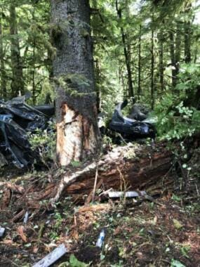 The wreck of the SUV among trees