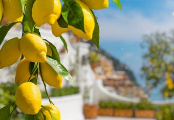 Amalfi Coast Vacation Packages for Foodies
