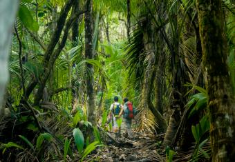 Costa Rica All Inclusive Vacations for Adventurers