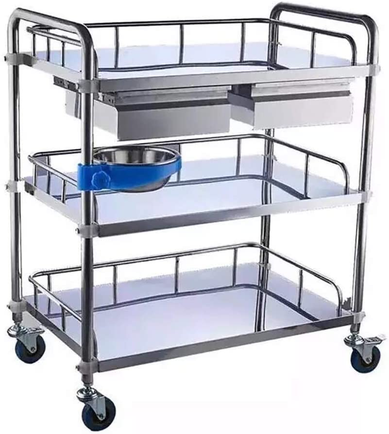 3-Tier Stainless Steel Beauty Salon Trolleys with Universal Wheel and Armrest, double Drawers & Dirt Bucket, Medical Service Cart for Laboratory, Beauty Salon, Clinic, Hospital