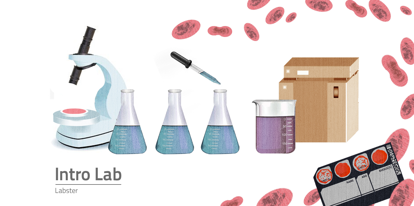 Welcome to the Introductory Lab.