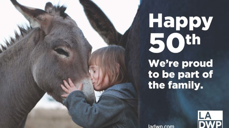 """Girl kissing mule. Text says: """"Happy 50th. We're proud to be part of the family."""""""