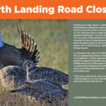 Starting March 1 – North Landing Road Closure